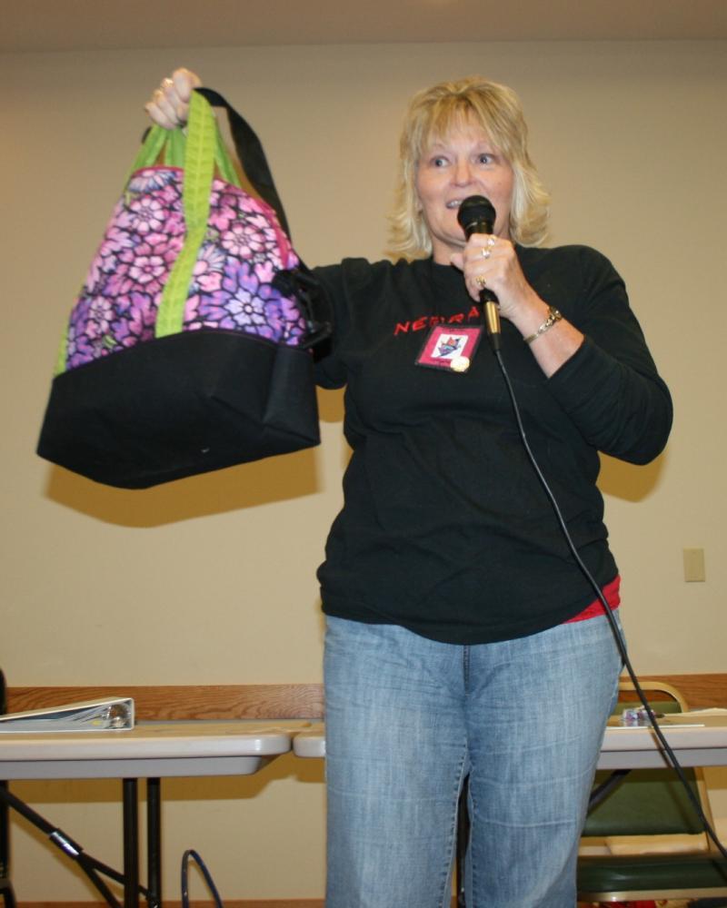 Marla M.-Aeroplane Bag made in a week of sewing in Oklahoma